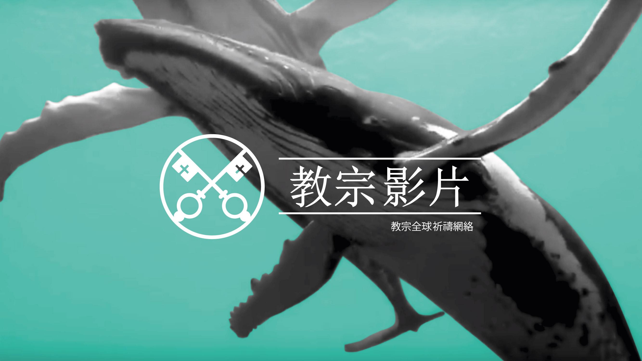 九月 : 為保護海洋