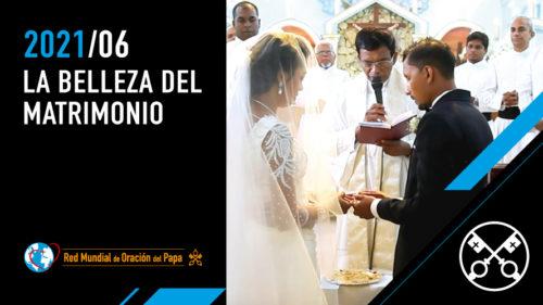 La belleza del matrimonio - The Pope Video 6