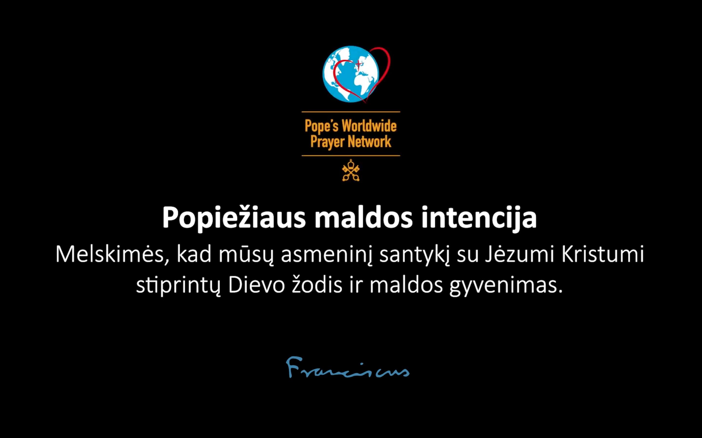 Popiežiaus maldos intencija gruodžiui